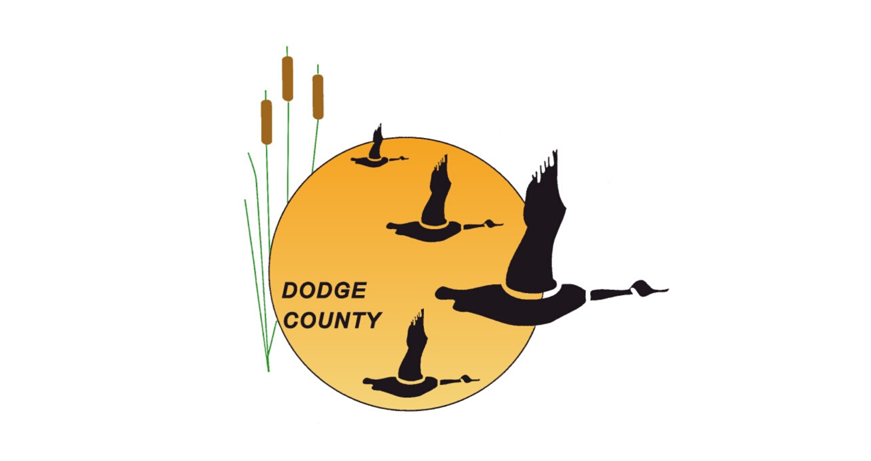 Dodge County, Wisconsin COVID-19 Response